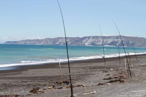 fishing poles.jpg