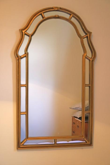 Penis mirror 1 small