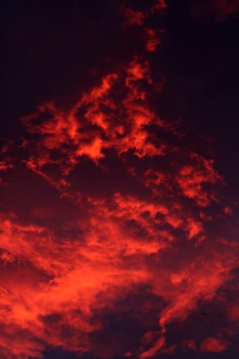 red sky small.jpg